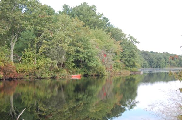 Or this one with the focus on the reds and reflections.